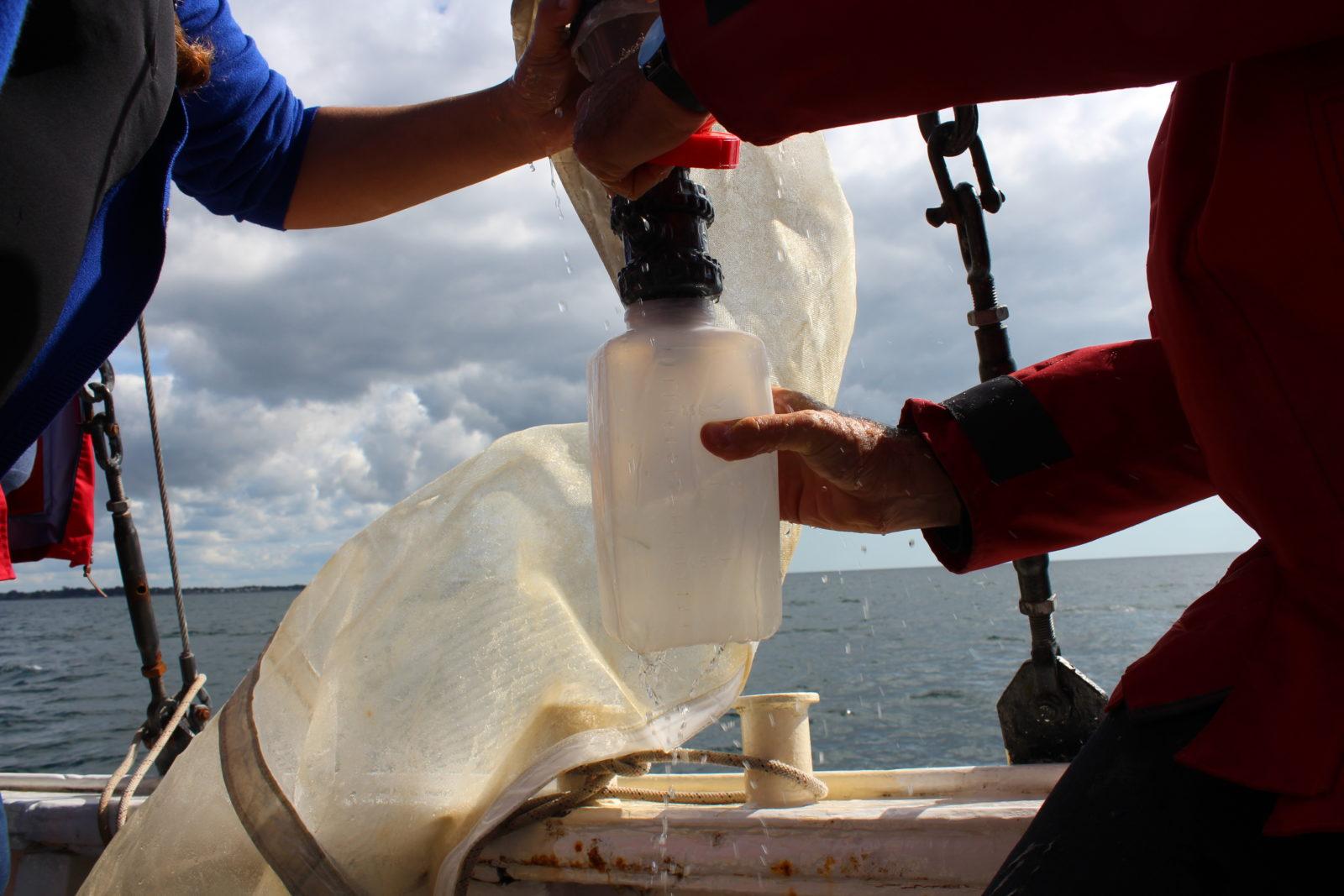 Objectif plancton filet sciences participatives