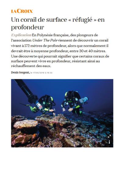 Un corail de surface « réfugié » en profondeur